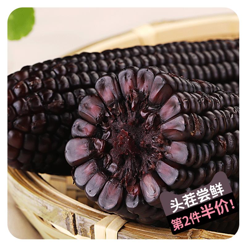 东北农嫂黑糯玉米200g*10穗