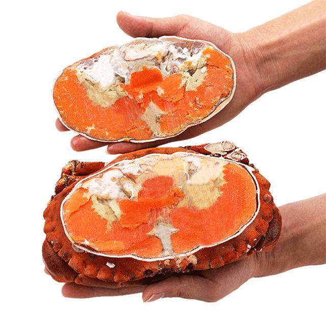 英国大面包蟹2只782件100%