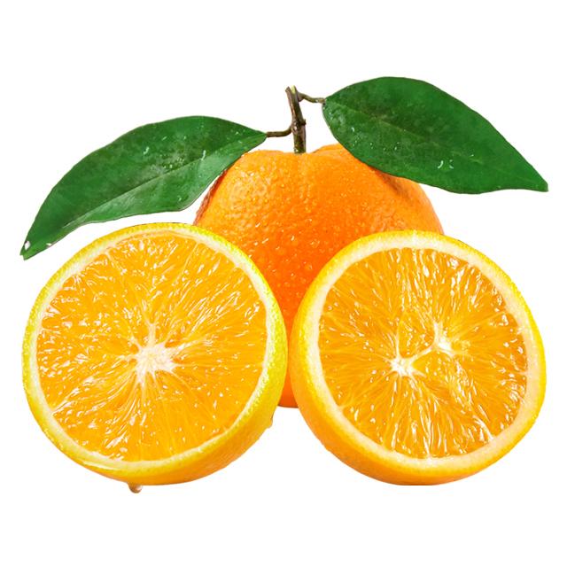 鲜甜多汁 秭归伦晚脐橙5斤