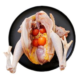 农家散养土鸡老母鸡2000g