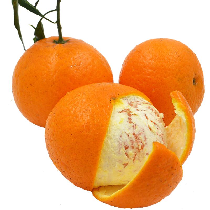 四川青见柑橘10斤