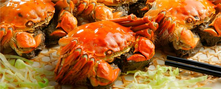 秋风起,蟹脚痒—螃蟹种类知多少