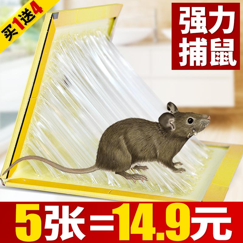 老鼠贴超强力粘鼠板驱鼠灭鼠器夹药抓捉大老鼠笼胶沾捕鼠神器家用