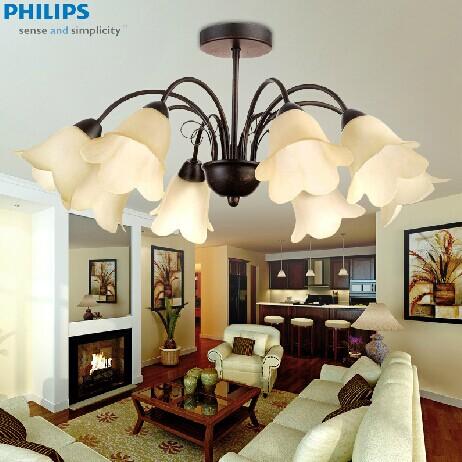 正品飞利浦 现代欧式简约 客厅卧室餐厅灯吊灯LED 雅兰五头 八头