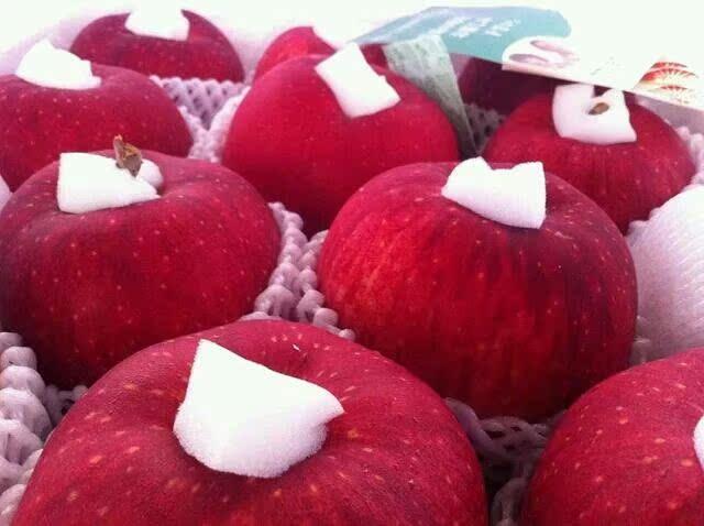 1元定金送货上门付款75元1斤当天空运到货新鲜水果日本青森苹果