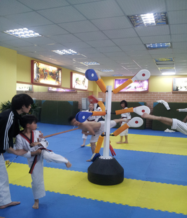 升级版跆拳道综合训练器 壁挂式训练器 学员训练必备 专利产品
