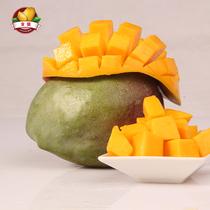 泰国芒果新鲜大青芒果象牙10斤新鲜水果薄皮金煌芒青皮芒果mango