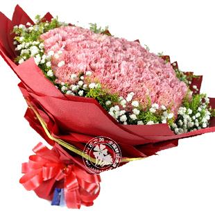 【99朵粉康乃馨】母亲速递烟台鲜花店朋友生日祝福大学鲜花店送花