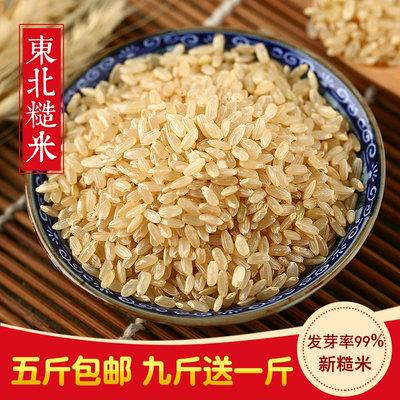 东北黑龙江17年新糙米500g优质粳米农家胚芽玄米粗粮五谷杂粮包邮