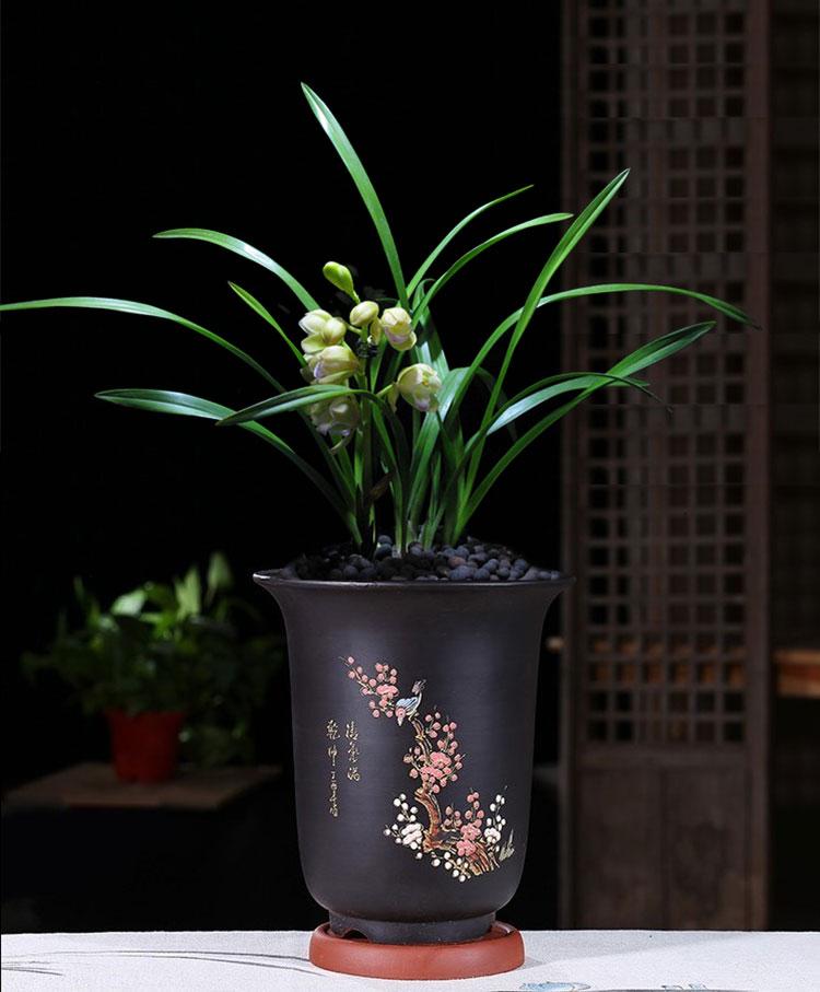 宜兴兰花盆紫砂盆粗陶简约多肉植物菖蒲桌面绿植陶瓷大兰花盆包邮
