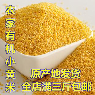 500克东北农家自产五谷杂粮非转基因小黄米月子宝宝小米新米包邮