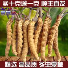 西藏冬虫夏草那曲 特级正品天然野生滋补玉树正宗4根1克 青海虫草