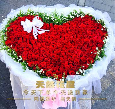 湘潭鲜花店365朵红玫瑰鲜花送爱人生日表白雨湖区岳塘同城速递