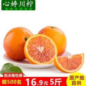 四川塔罗科资中血橙新鲜橙子 孕妇水果 胜赣南脐橙 血橙5斤装包邮