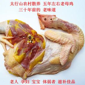 农家散养土鸡老母鸡5年草鸡活鸡现宰煲汤滋补月子鸡农村柴鸡