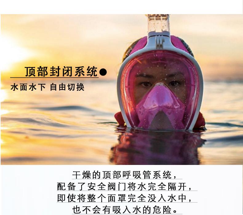 天天特价浮潜面罩全干式大人儿童潜水镜三宝装备面镜呼吸管游泳套