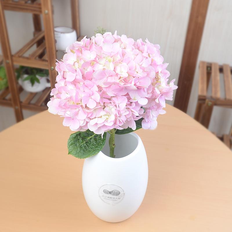 云南多色绣球花鲜花速递家庭用花办公室鲜切花EMS空运包邮到家