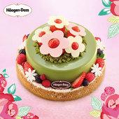 哈根达斯生日蛋糕冰淇淋花绽放600克 上海北京广州 全国同城外送