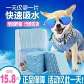 宠物用品狗狗尿片 除臭尿不湿兔子尿垫猫纸尿布S的100片泰迪金毛