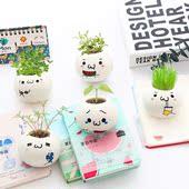 可爱卡通表情创意豆包迷你绿色植物盆栽家居办公室桌面盆景小植栽