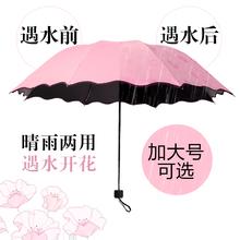 晴雨伞折叠两用遮阳太阳超大号黑胶防晒紫外线女广告定制印字logo