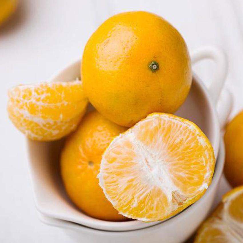 正宗广东德庆贡柑5斤 皇帝贡柑 橘橙子手剥橙 柑橘 国产新鲜水果
