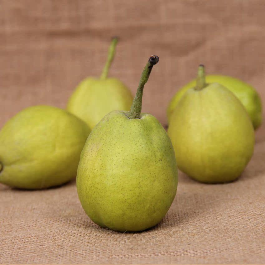 新疆库尔勒香梨3斤 特级香梨 生津止渴梨子 新鲜水果正宗新疆水果