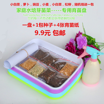 芽菜育苗盘套装芽苗菜水