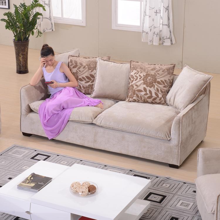 小户型可拆洗布艺沙发客厅组合家具简约现代含羽绒软沙发 一字型