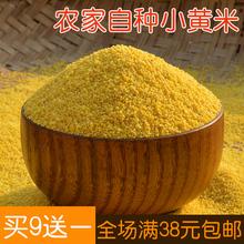 黄小米 沂蒙山区农家 月子米 小黄米 250g无污染宝宝米 满额包邮
