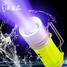 渔自在防水全浮水夜钓灯特价钓鱼灯200W超亮强光钓灯蓝光灯手电筒