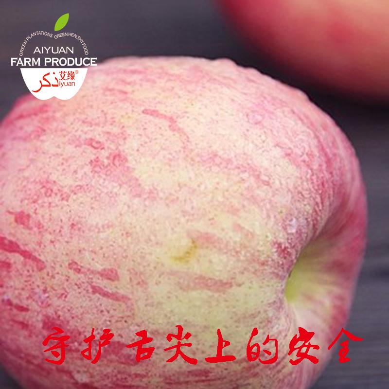 正宗山东烟台红富士苹果特产好吃水果新鲜孕妇水果约4.5斤装包邮