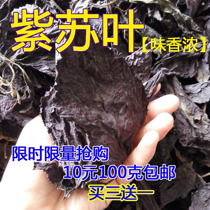 新货纯天然 双面紫 紫苏叶 紫苏干叶 海鲜 烧鱼虾去腥 100克 包邮