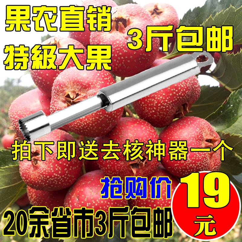新鲜山楂果 红果 沂蒙山楂 山里红 冰糖葫芦原料 特大果 3斤包邮