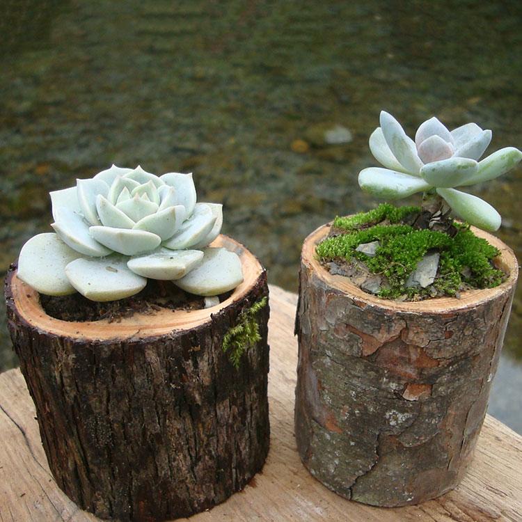 多肉花盆原木树桩木花盆带树皮石斛盆栽器创意木头花盆树根花盆