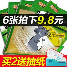 6张装金大侠超强力粘鼠板抓老鼠贴夹家用捕鼠器笼药胶驱鼠器灭鼠