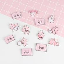 日韩简约少女萌粉色外套小兔子亚克力徽章胸针学生可爱别针装饰品